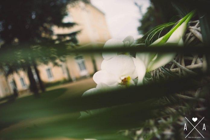 Aude Arnaud Photography, photographe le mans, photographe nantes2.jpg